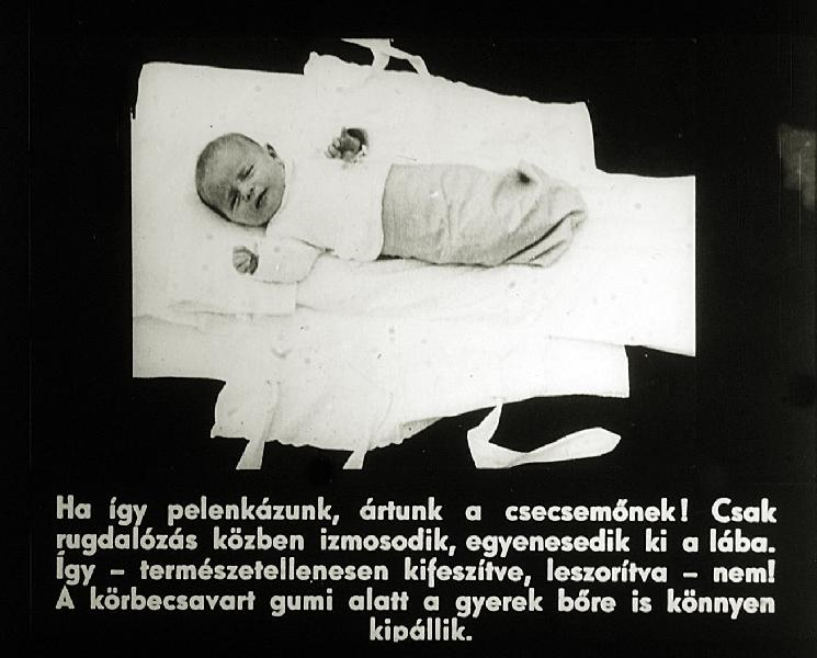 Peter Kensok s Dietrich Ley - H Zi Szerek s Gyogymodok Kislexikona